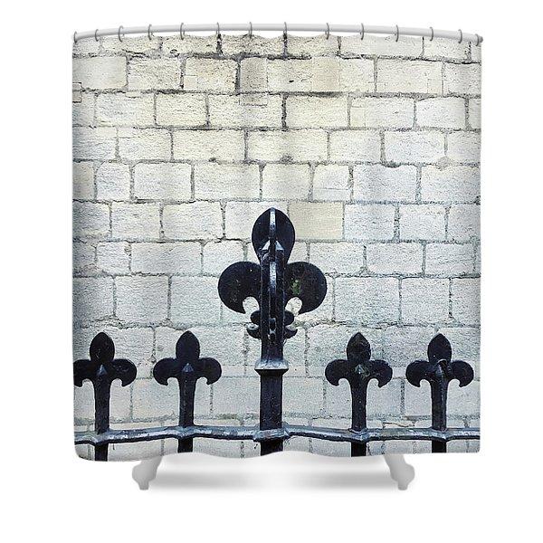 Iron Railings Detail  Shower Curtain