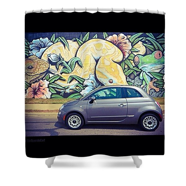Is It Safe To Drive Mr. #fiat Into The Shower Curtain