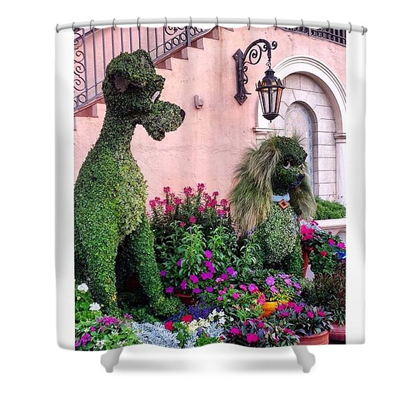 Lady And The Tramp Shower Curtain