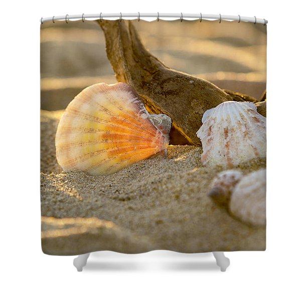 It's A Beach Thing Shower Curtain