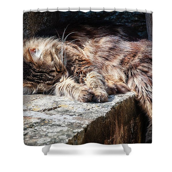 It's A Hard Life Shower Curtain