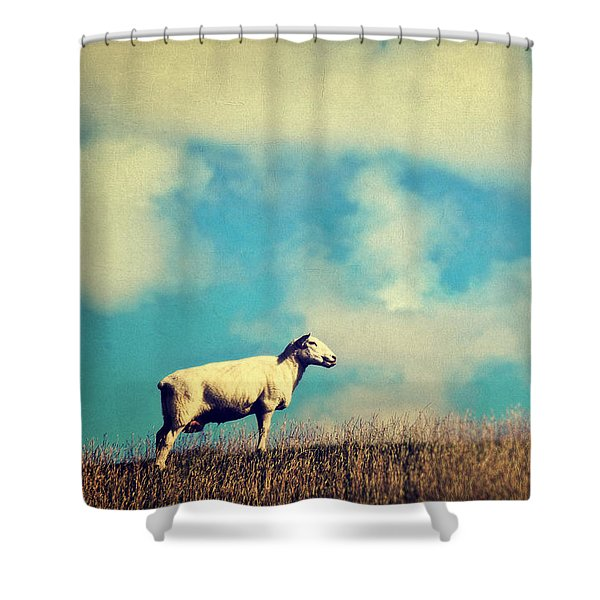 It's A Sheep Shower Curtain