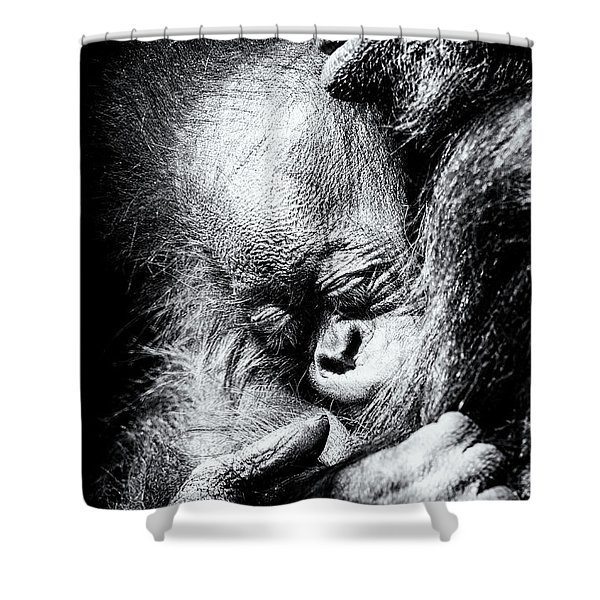 It's Moments Like These... Shower Curtain
