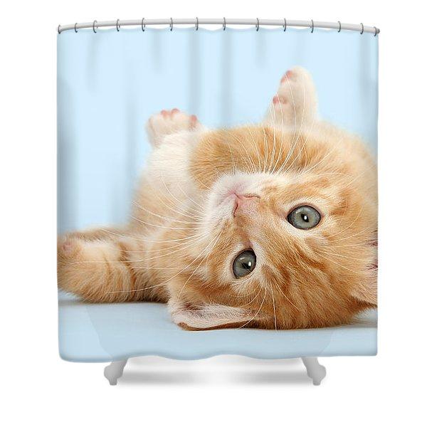 It's Sunday, I'm Feeling Lazy Shower Curtain