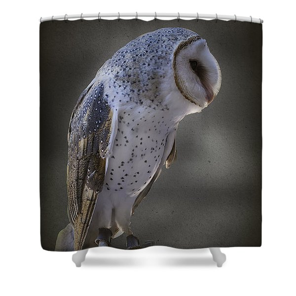 Ivy The Barn Owl Shower Curtain