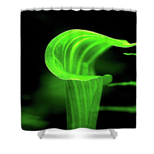 Shower Curtain featuring the photograph Jack In The Pulpit With Ferns by Meta Gatschenberger