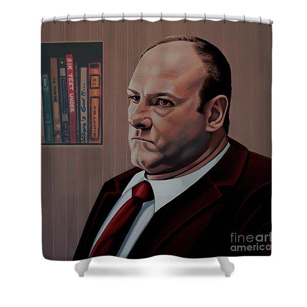James Gandolfini Painting Shower Curtain
