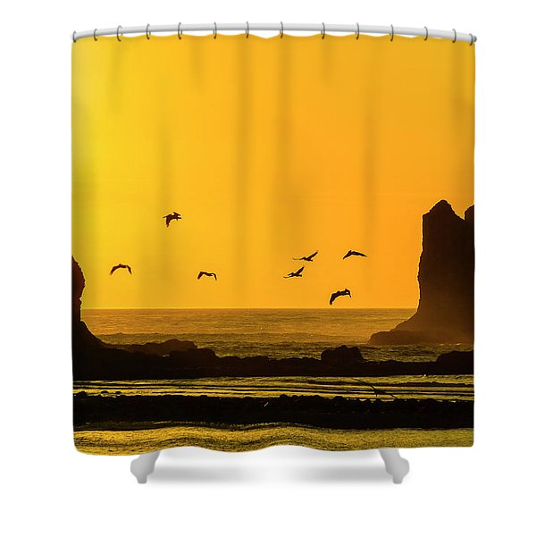 James Island And Pelicans Shower Curtain