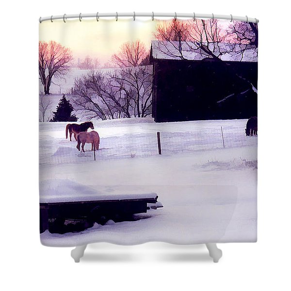 January At Jackson's Shower Curtain