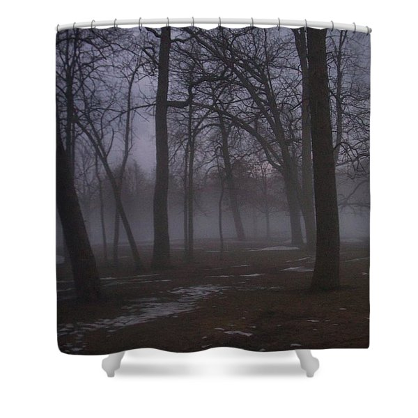 Shower Curtain featuring the photograph January Fog 2 by Anita Burgermeister