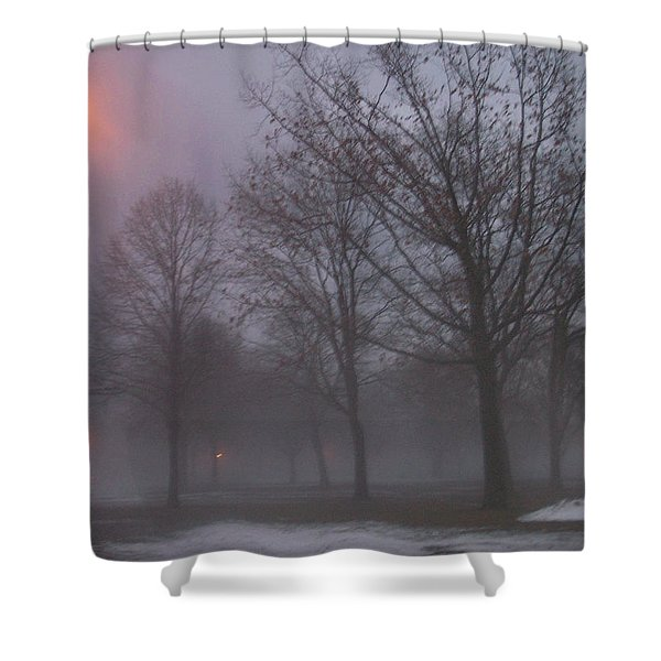 Shower Curtain featuring the photograph January Fog 3 by Anita Burgermeister