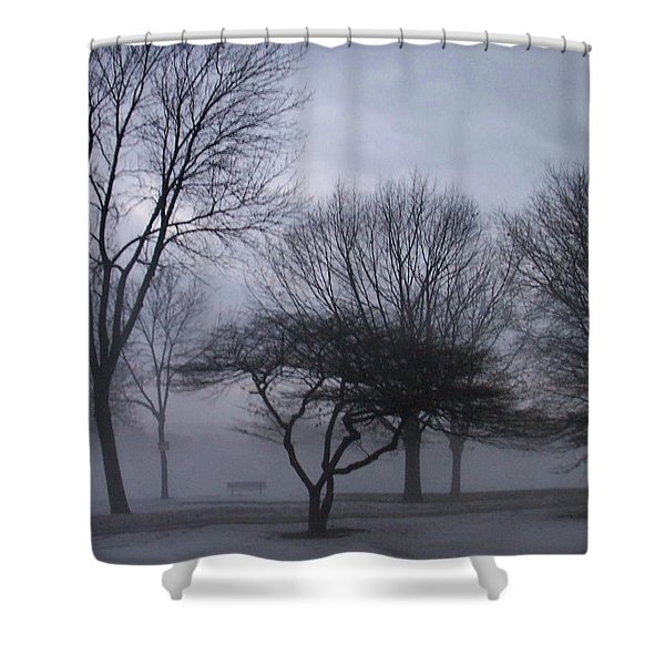 Shower Curtain featuring the photograph January Fog 6 by Anita Burgermeister