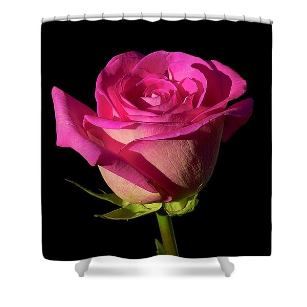 January Rose Shower Curtain