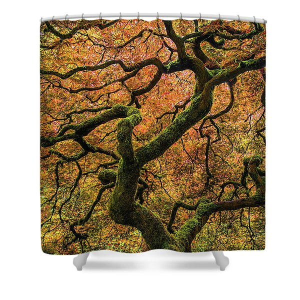 Japanese Maple Tree Shower Curtain