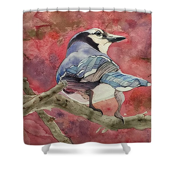 Jay In The Japanese Maple Shower Curtain