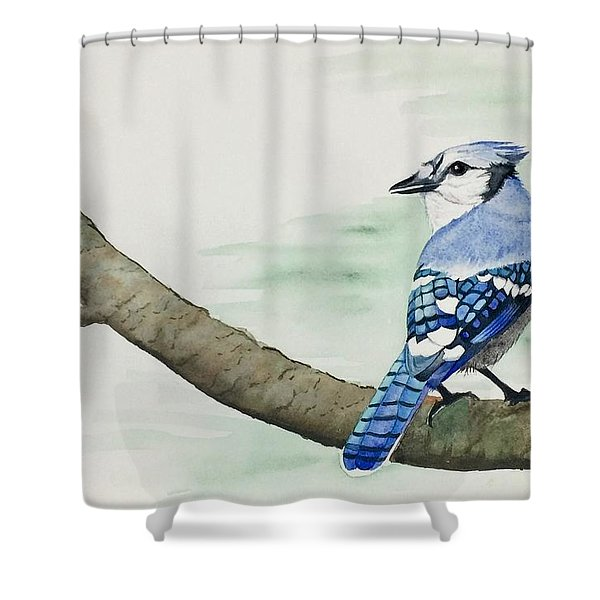 Jay In The Pine Shower Curtain
