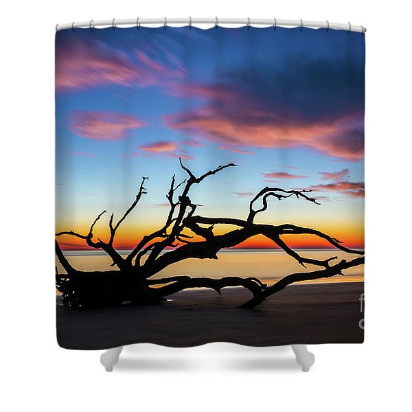Jekyll Island Sunrise On Driftwood Beach Shower Curtain