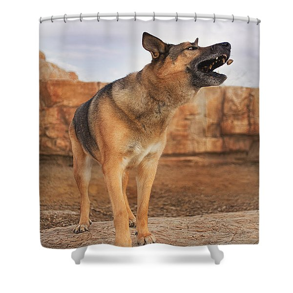 Jerry Lee  Shower Curtain