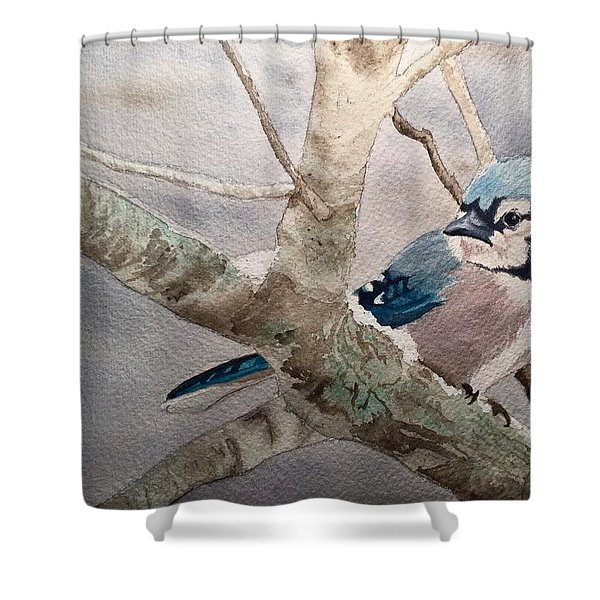 Cold Winter's Jay Shower Curtain