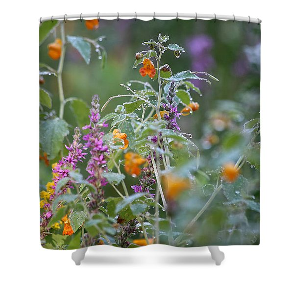 Jewel Weed With Dew Diamonds Shower Curtain