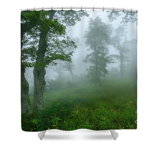 Jewell Hollow Overlook Shower Curtain