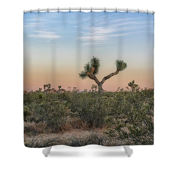 Joshua Tree Evening Shower Curtain