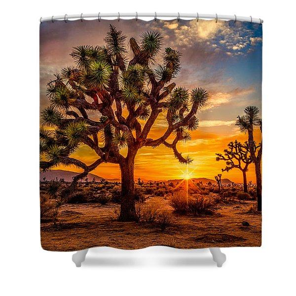 Joshua Tree Glow Shower Curtain