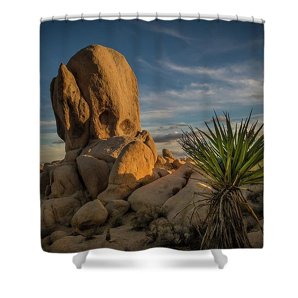 Joshua Tree Rock Formation Shower Curtain