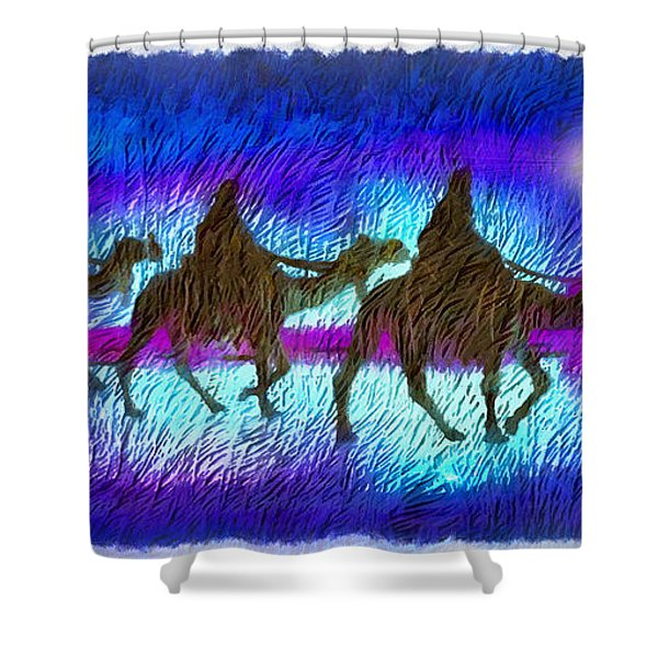 Journey Of The Three Wise Men Shower Curtain