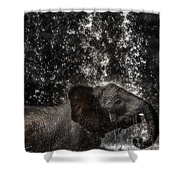 Joy Of Life Shower Curtain