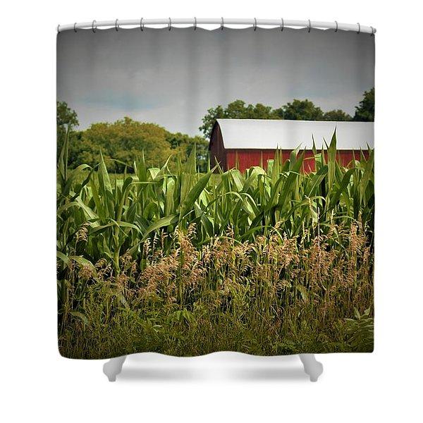0020 - July Corn Shower Curtain