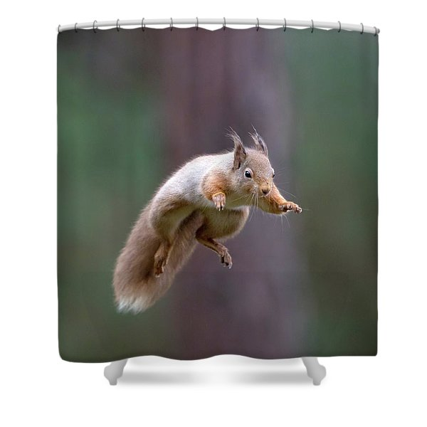 Jumping Red Squirrel Shower Curtain