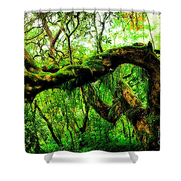 Jungle Forest Himalayas Mountain Nepal Shower Curtain