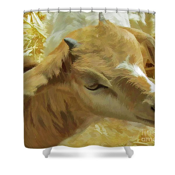 Just A Kid Shower Curtain