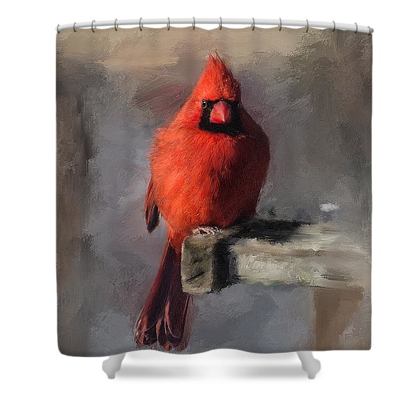 Just An Ordinary Day Shower Curtain