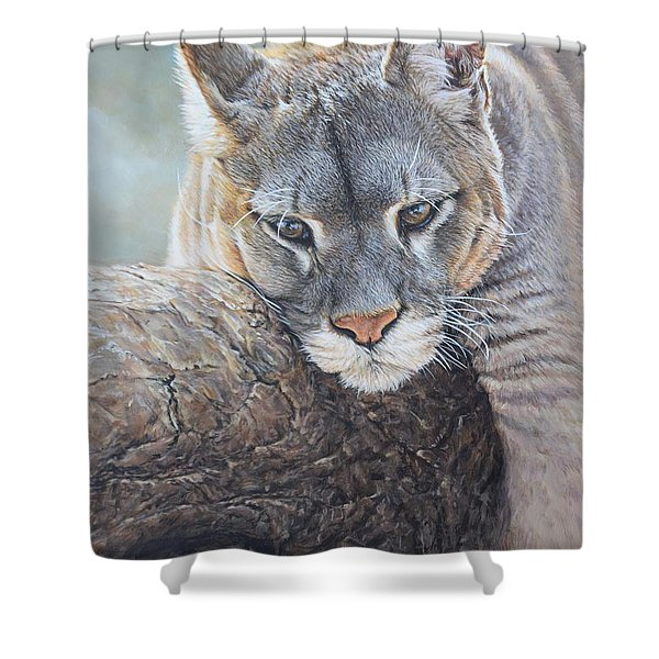 Shower Curtain featuring the painting Just Chilling by Alan M Hunt
