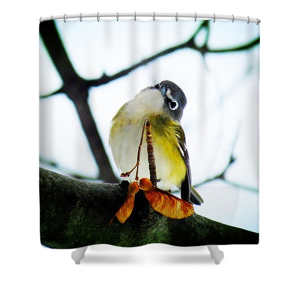 Just Curious Shower Curtain