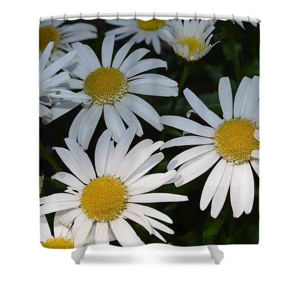 Just Daises Shower Curtain