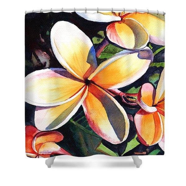 Kauai Rainbow Plumeria Shower Curtain