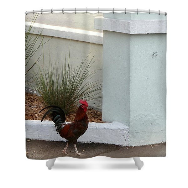 Key West Street Walker Shower Curtain