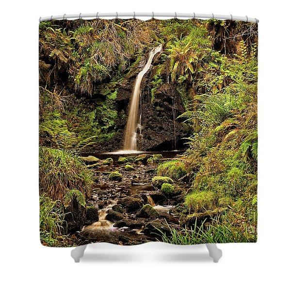 Kielder Forest Waterfall Shower Curtain