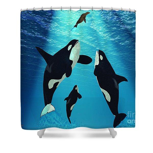 Killer Whales Shower Curtain