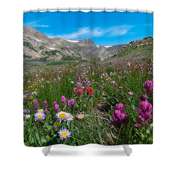 King Lake Summer Landscape Shower Curtain