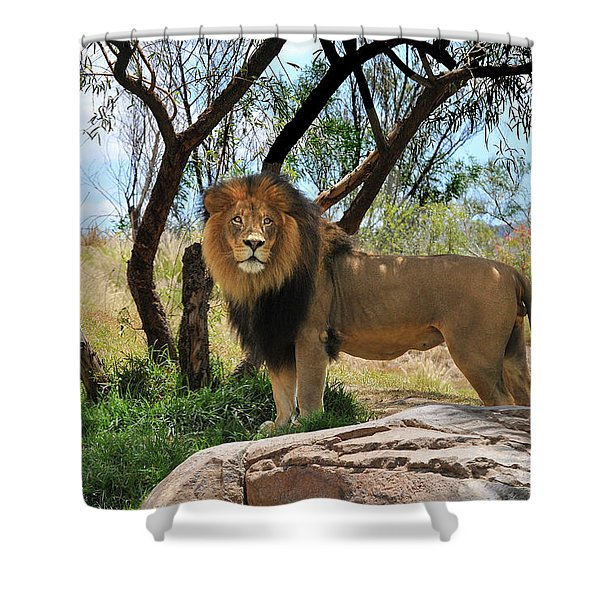 King Of His Domain Shower Curtain