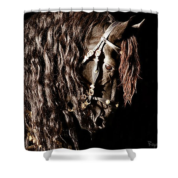 King Of Horses Shower Curtain