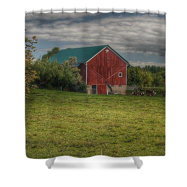 0039 - Kingston's Plain Road Cow Barn I Shower Curtain