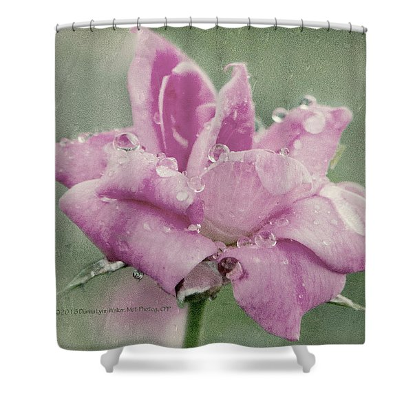 Kissed By The Rain Shower Curtain