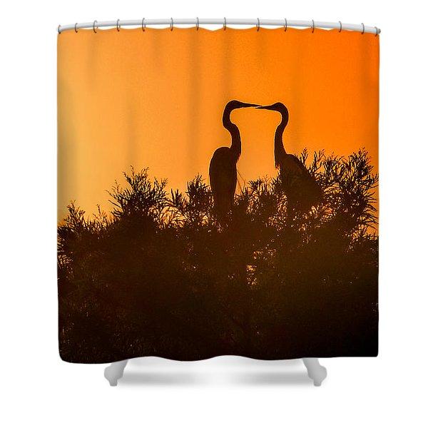 Kissing Herons  Shower Curtain