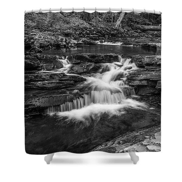 Kitchen Creek - 8902 Shower Curtain