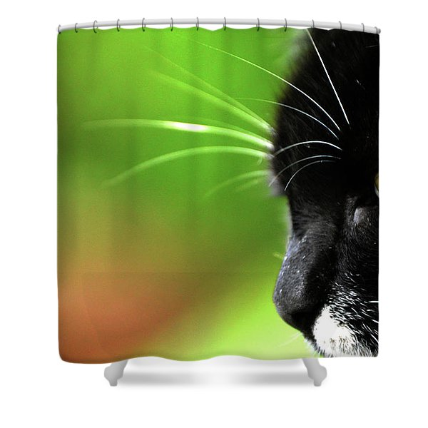 Kitkat Profile By Lesa Fine Shower Curtain